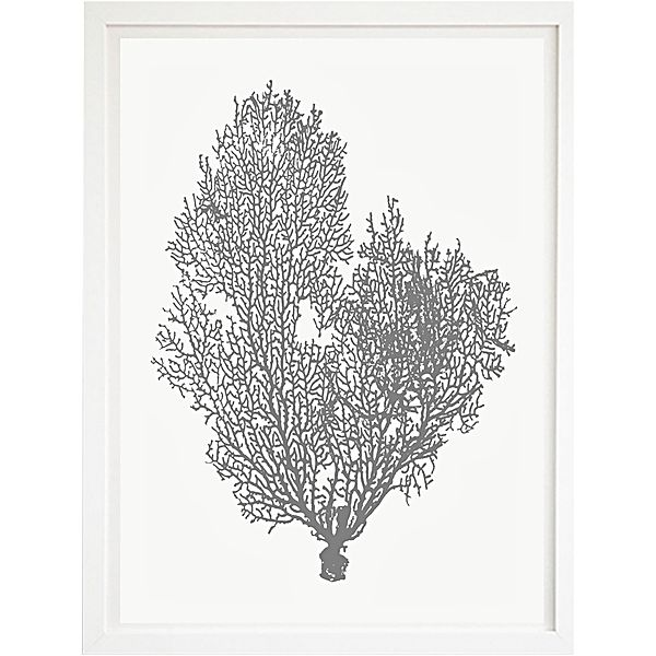 Natural Coral Artwork for a Coastal Style