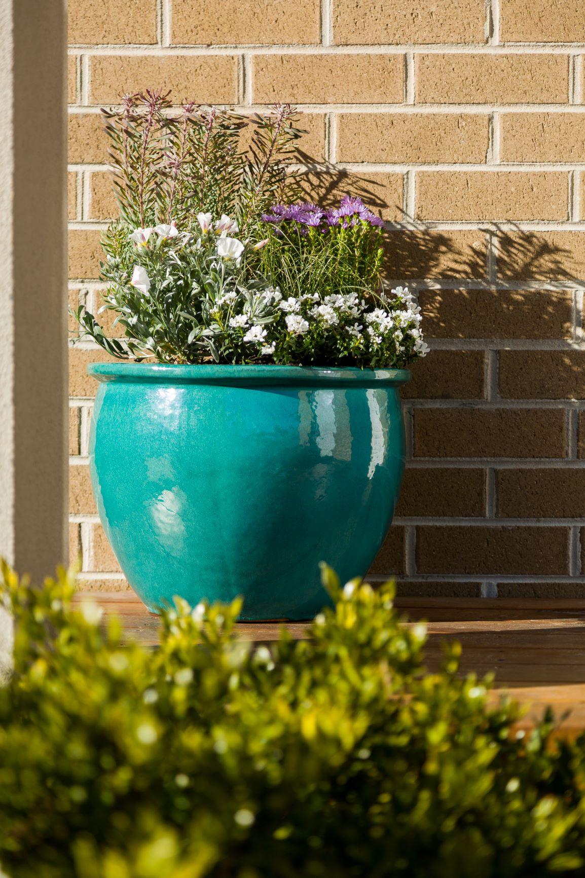 Tips for a healthy green garden