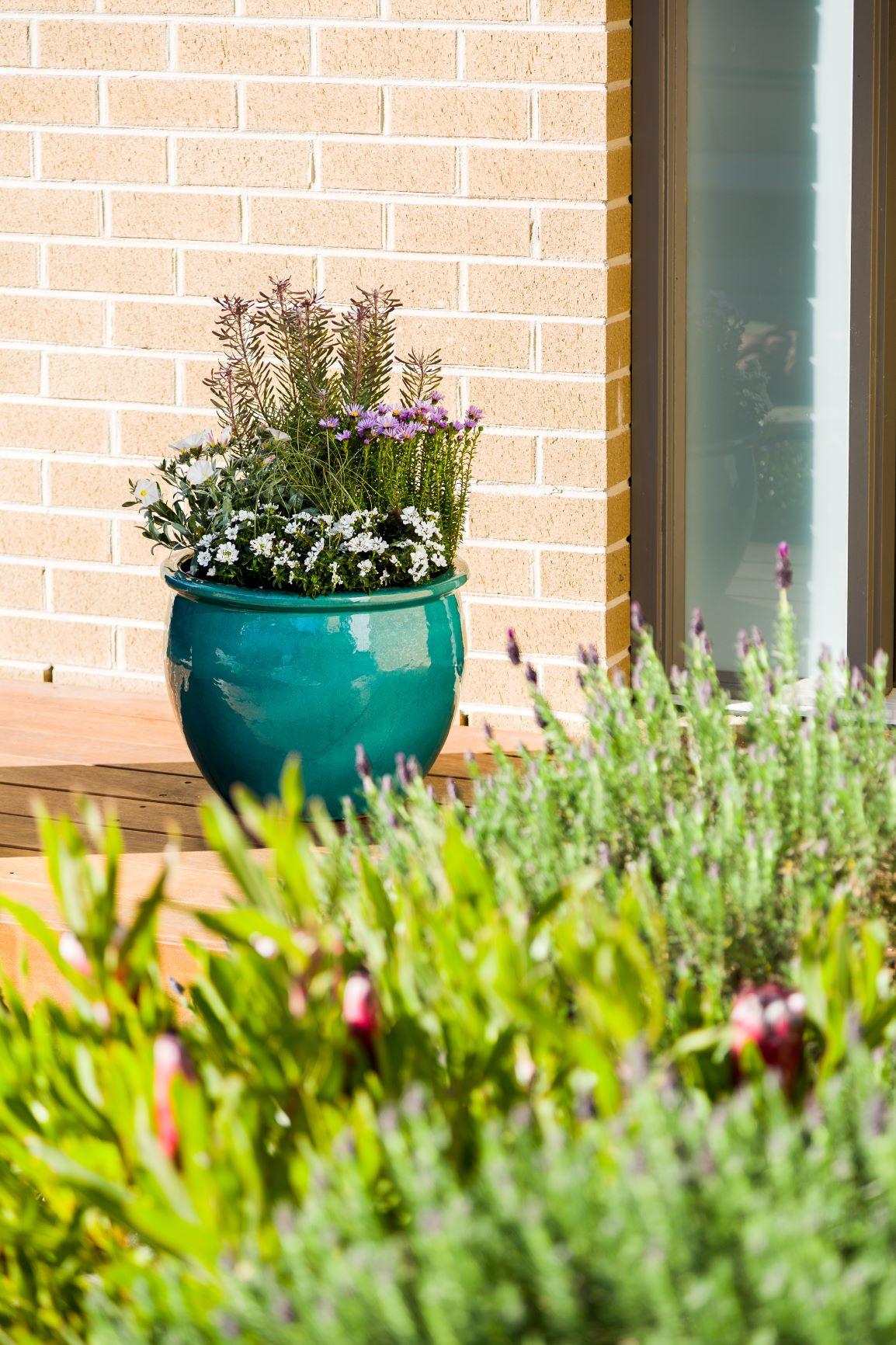 Tips to create a healthy green garden