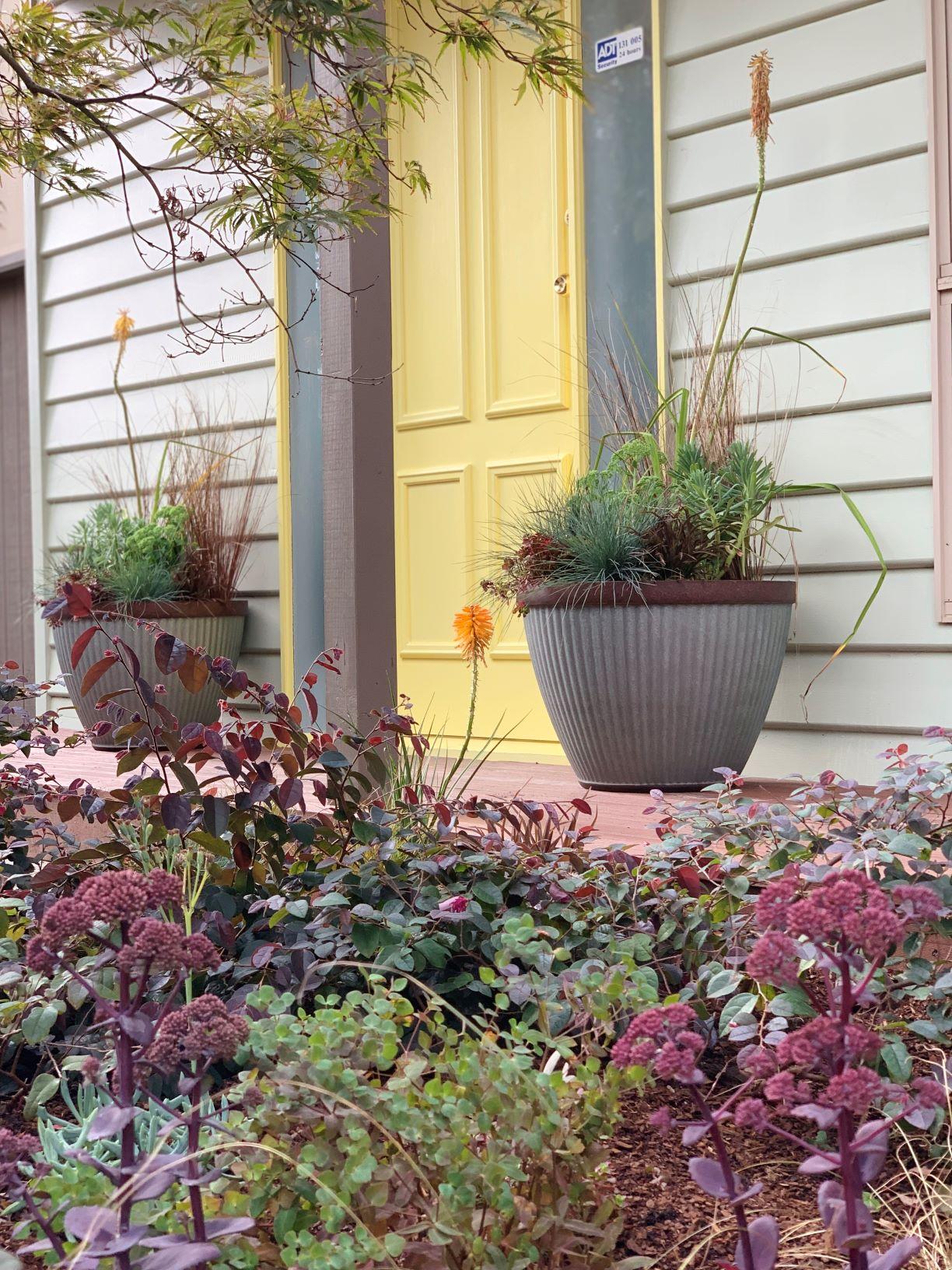 Tips to create a healthy green garden space